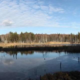 Medium img 5291 panorama