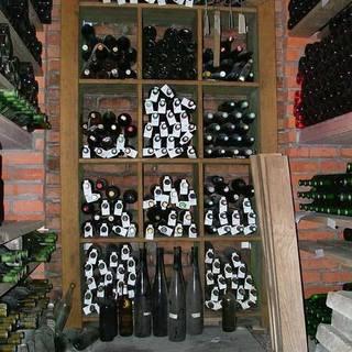 Medium wine trails 009