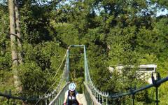 Dyje swing bridge