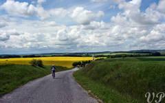Biker in the fields