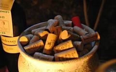 Moravian wines