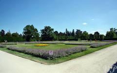Lednice gardens